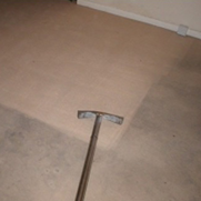 Water Damage Removal Carpet Cleaning Charleston Goose